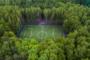 Déforestation : 1 terrain de foot toutes les 2 secondes !